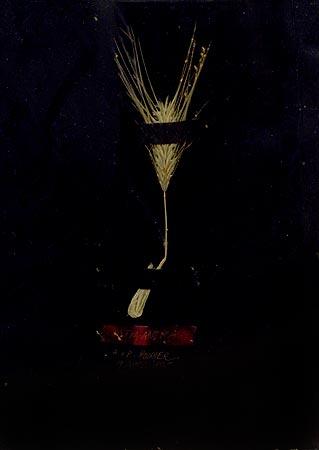 """Herbier de cire"" (series of 14), 1975  Flower and black Vergé paper in wax 24 x 17 cm, APP 030"