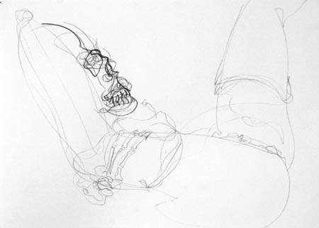 Untitled 006, 2003  pencil and charcoal on paper, 50 x 70 cm