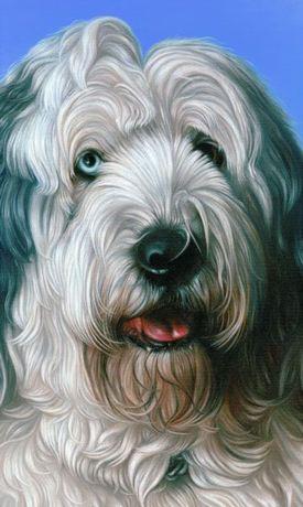Tommaso  oil on canvas